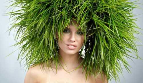 Мифы о профессиональных шампунях