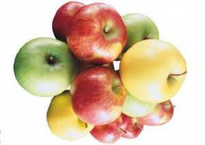 Разгрузочный день на яблоках,  польза и вред для