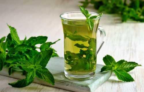 Принесут пользу при лечении простудных заболеваниях также такие растения, как вербена лекарственная, ветреница анемона, мускатный орех, амарант, липа, репчатый лук, девясил, купена, малина, и шалфей луговой